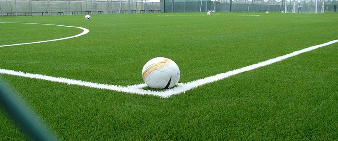 grama sintetica decorativa mercado livre:Futebol Society Grama Sintética Esportiva Grama Sintética Decorativa